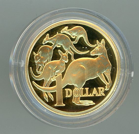 Thumbnail for 2009 $1 Gold Proof Coin 21.52gm .999 Gold - 25th Anniversary