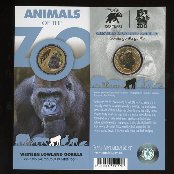 Thumbnail for 2012 Zoo Series - Western Lowland Gorilla