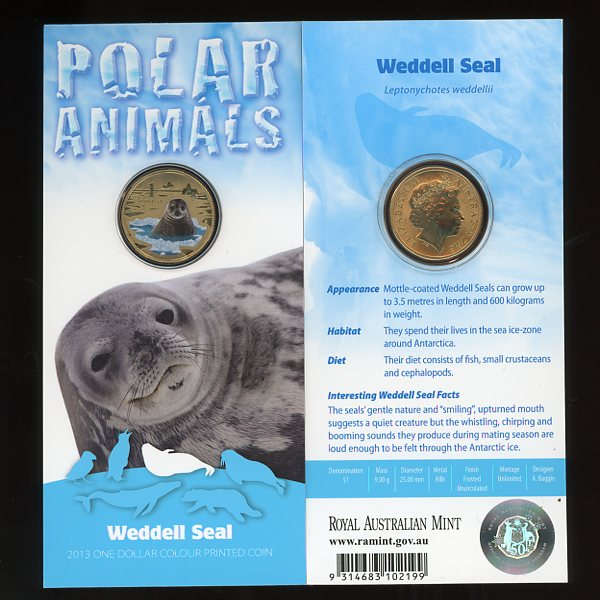 Thumbnail for 2013 Polar Series - Weddell Seal