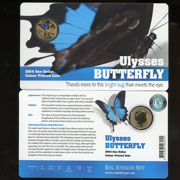 Thumbnail for 2014 Bright Bugs - Ulysses Butterfly