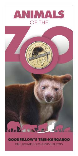 Thumbnail for 2012 Zoo Series - Goodfellow's Tree Kangaroo