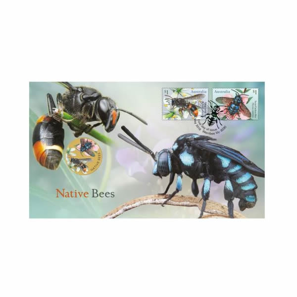 Thumbnail for 2019 Issue 17 Native Bees