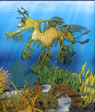 Thumbnail for 2009 Australian Sea Life Half oz Coloured Silverproof- Leafy Sea Dragon