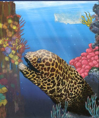 Thumbnail for 2010 Australian Sea Life Half oz Coloured Silverproof - Moray Eel