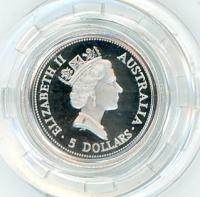 Image 2 for 1993 One Twentieth oz Proof Platinum Koala in Capsule